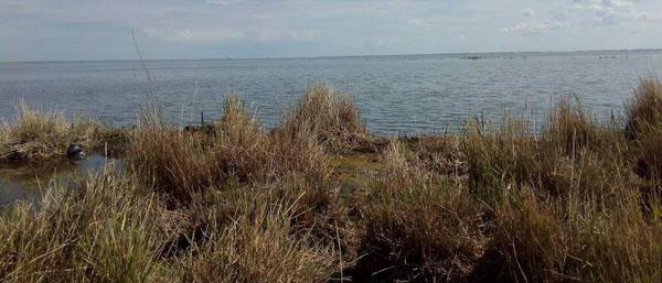 Берег озера Уелги на Рыбалка Урал