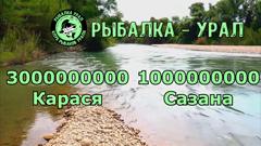 Пацаны на рыбалке. Тут 3000000000 карася и 1000000000 сазана. Как нам быть с этим короновирусом!